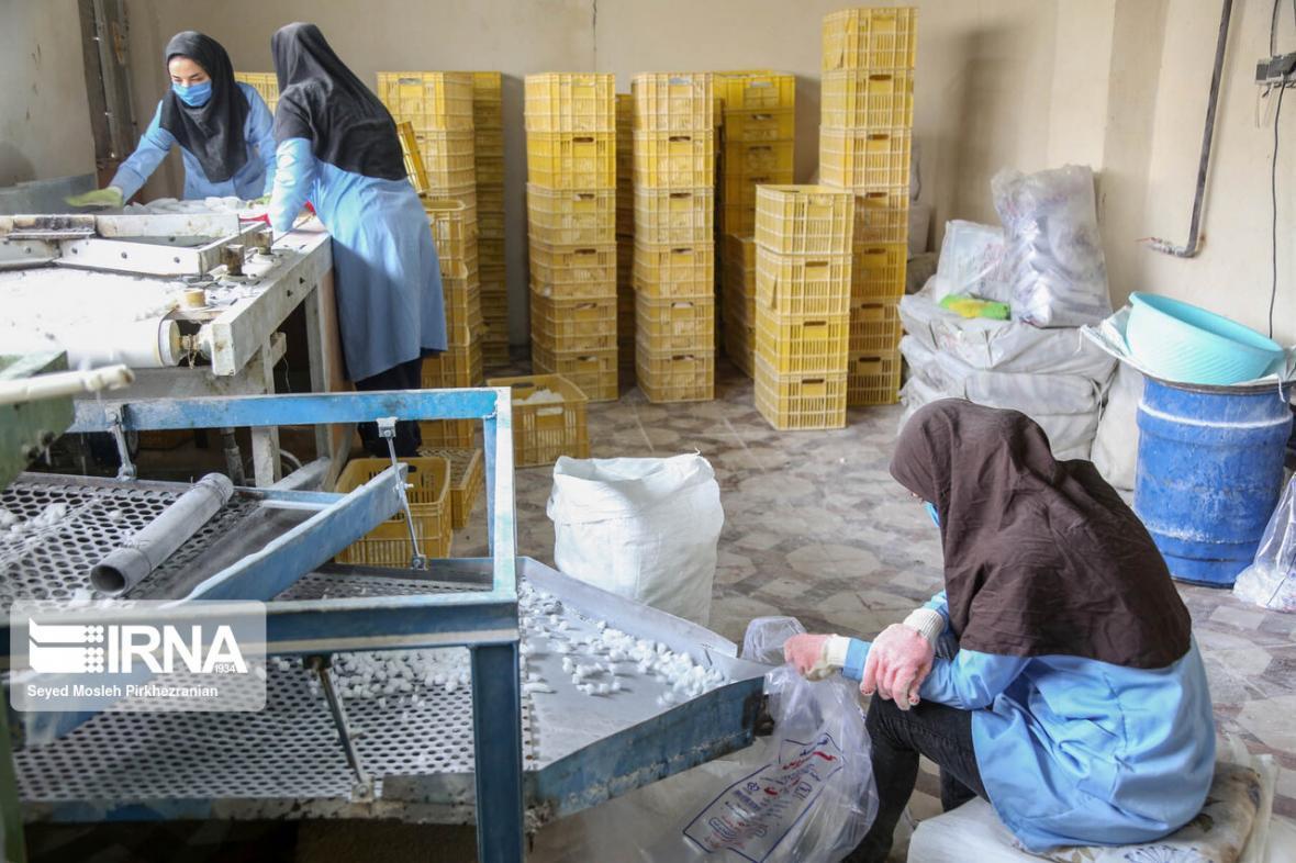 خبرنگاران جذب وام اشتغال مددجویان خراسان شمالی از 100 درصد گذشت